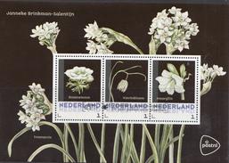 Nederland - Postset Janneke Brinkman - Bloemen - Bosanemoon/kievitsbloem/amaryllis - Stempel Leiden 14-02-'17 -3 Kaarten - Netherlands