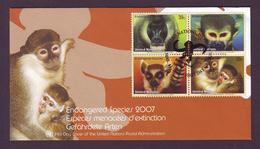 NATIONS UNIES / ONU - FDC  -  Singes Menacés D´extinction - 15/03/2007