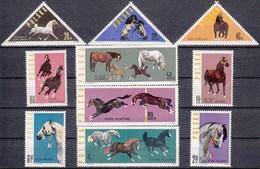 Polen Polska 1963: Polnische & Arabische Pferde Michel-Nr.1447-1456 ** MNH - Pferde