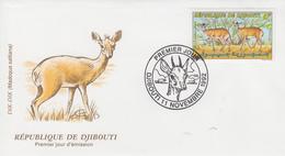 Enveloppe  FDC  1er  Jour   DJIBOUTI   Dik - Dik   1992