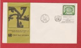 USA  --  Journée Des Droits De L Homme 1958 - New-York - Siège De L'ONU