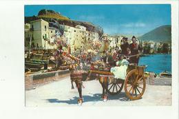 136831 CEFALU' CARRETTO SICILIANO - Palermo