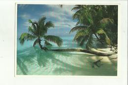 136839  Maldive Islands - Maldive