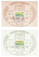 Allemagne // Deutschland // Lot De 2 Cartes Maximum Automatenpostwertzeichen