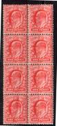 1902 MNH Block Of 8 XF (e148)