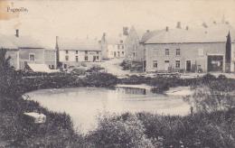 Fagnolle - La Mare Au Centre Du Village (matériel Agricole & Commerces) Circulé 1914 - Philippeville