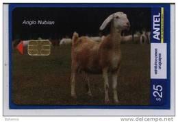 Uruguay TC449a -Cabras- Anglo Nubian