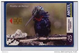 Uruguay TC377a Picaflor De Barbijo