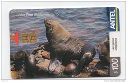 Uruguay TC294a Lobo Fino Sudamericano