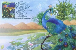Maximum Card - Peacock Lake Bird Flowers Forest Mother Nature Biodiversity