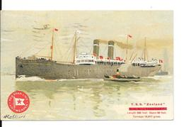 "Bateau - Red Star Line - T.s.s. ""Zeeland"" Length ""LENGTH 580 FEET. BEAM 60 FEET TONNAGE 12,017 GROSS - Circulé:1923. - Commerce"