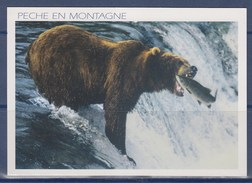 """L'Ours Pêche En Montagne """" Ours Brun Des Pyrénées"""" Timbre N°454 Adhésif 12.08.11 Tarte Tatin"""