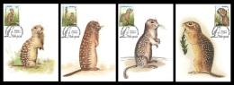 Maxicard Belarus 2015 Mih. 1074/77 Fauna. WWF. Speckled Ground Squirrel (4 Maxicards) - Belarus