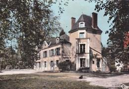 MEUSNES - Le Château - Other Municipalities