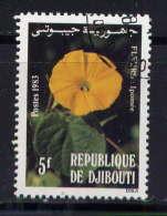 DJIBOUTI - 564° -  IPOMEE