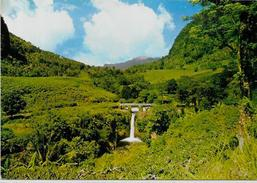 CPSM CPM  10 X 15 Mayotte Les Comores Non Circulé Anjouan Tatinga - Mayotte