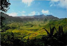 CPSM CPM  10 X 15 Mayotte Les Comores Non Circulé Anjouan Dziani - Mayotte