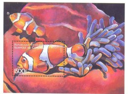 COMORES   876  MINT NEVER HINGED SOUVENIR SHEET OF FISH-MARINE LIFE  #   112-4  ( - Fische