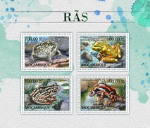 Mozambique. 2016 Frogs. (513a)