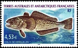 FRENCH ANTARCTIC TAAF FSAT 2006 Fish, Marbled Rockcod, Marine Life, Fauna MNH - Nuevos