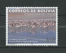 Bolivia 2005 White Deserts - Lagoons Of Colours.tourism Birds.flamingos.MNH