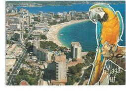 Magalluf Mallorca - Mallorca