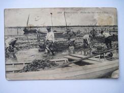 CPA  Marennes, Pêche Des Huitres à D'Erre.  19.. T.B.E (sale) Animée - Marennes