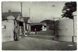 HYERES Les PALMIERS , Le Palyvestre - [ Base Aérienne De La Marine ] - Format 9x14   - Bon état - Hyeres