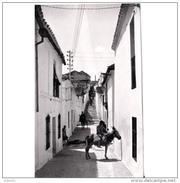 MLGTP1588CPA-LFTD7027TABU.Tajeta Postal De Malaga.Casas,animales En Calle Típica De  CORTES DE LA FRONTERA.Malaga - Burros