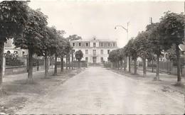 SARTROUVILLE ... AVENUE ROGER SALENGRO ET HOTEL DE VILLE - France