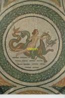 Naiade   Musée Du Bardo    (tunisie) - Ancient World
