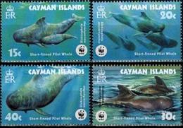 MDN-BK1-342-2 MDW-BK1-414 MINT PF/MNH ¤ CAYMAN ISLANDS 2003 4w In Serie ¤ WWF - MARINE LIFE - SEALIFE - SEA MAMMALS