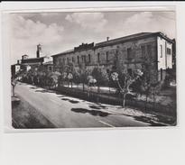 Megliadino San Fidenzio ( Padova )  196? Via Marconi E Scuole - Padova (Padua)