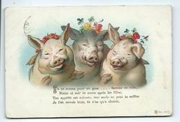 Fantaisie Animaux - COCHONS En Trio  - Message ....humoristique - Animali Abbigliati