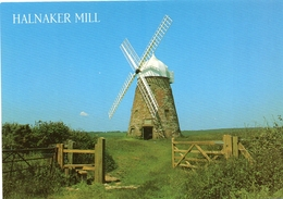 Postcard - Halnaker Windmill, Sussex. 2-61-00-38 - Molinos De Viento