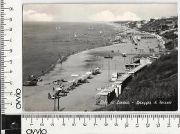 LAVINIO 1954 Spiaggia Di Levante  Viaggiata - Altre Città