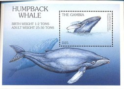 MINT NEVER HINGED S/ SHEET OF ENDANGERED SPECIES OF THE WORLD ;HUMPBACK WHALE ( GAMBIA   1873