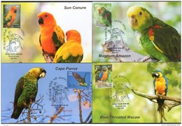 India 2016 Exotic Birds Parrots Blue Throated Macaw Wildlife Animals Fauna 6 Max Cards # 7553