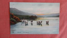 Tuck Series Evening Loch Arklet  Cows  .ref --2494 - Vaches