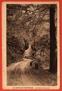 CP37 38 SAINT PIERRE DE CHARTREUSE La Route Du Couvent 1935