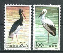 194 CHINE 1992 - Yvert 3105/06 - Oiseau Cignogne -  Neuf ** (MNH) Sans Trace De Charniere - 1949 - ... République Populaire