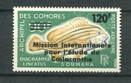 194 COMORES 1973 - Yvert A 52 Surcharge - Poisson -  Neuf ** (MNH) Sans Trace De Charniere