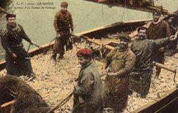 DPT 76 LE HAVRE Arrivée D'un Bateau De Harengs - Le Havre
