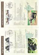 République Démocratique - Document De 2001 - Oblit Berlin - Rhinocéros - Gorilles - Bedrohte Tierarten