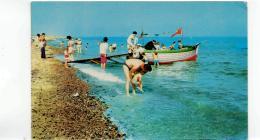 Postcard - Beach Sea Trips,Hemsby Very Good - Cartes Postales