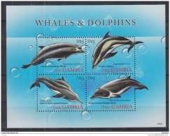 T31 Gambia - MNH - Marine Life