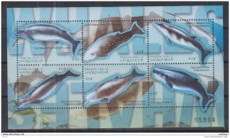 T31 Micronesia - MNH - Marine Life
