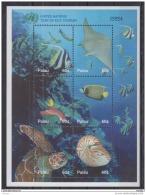 T31 Palau - MNH - Marine Life