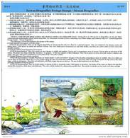 Folder Taiwan 2000 Stream Dragonflies Stamps S/s Dragonfly Fauna River Rock Insect