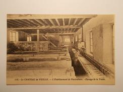 Carte Postale -  Château De VIZILLE (38) - Etablissement De Pisciculture - Elevage De La Truite (282A)